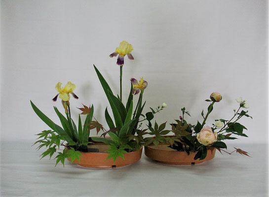 2020.6.23 <ジャーマンアイリス 梅花空木(バイカウツギ) 楓(カエデ) 芍薬(シャクヤク) 麝香葵(ジャコウアオイ)> 庭の花を加えて琳派調いけばなのお稽古です。Kumikoさんの作品です。