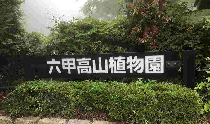 六甲山を訪ねた目的の一つはこの高山植物園です。