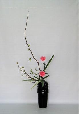 2020.2.25 <土佐水木 カーネーション キキョウラン> Kumikoさんの作品です。木々の芽吹きが春らしいスッキリとしたオシャレな作品に仕上がりました。