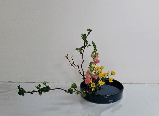 2020.4.8 <芽出し木苺 スナップドラゴン 小菊> Kayoさんの作品です。丸水盤で傾斜型のお稽古をしました。