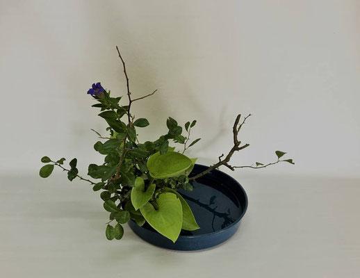 2018.10.2 <木瓜 竜胆 擬宝珠> Kumikoさんの作品です。写景盛花・自然本位のお稽古をしました。