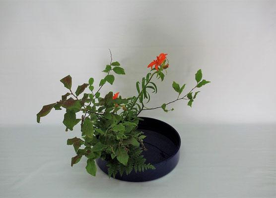 2020.7.7 <夏ハゼ 姫百合 レザーファン> 姫百合が届きましたので、写景盛花自然本位のお稽古です。Kumikoさんの作品です。