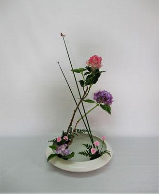 2020.7.7 <太藺(フトイ) 紫陽花(アジサイ) 撫子(ナデシコ) レザーファン> 初めて「花奏」のお稽古をしました。Chiakiさんの作品です。