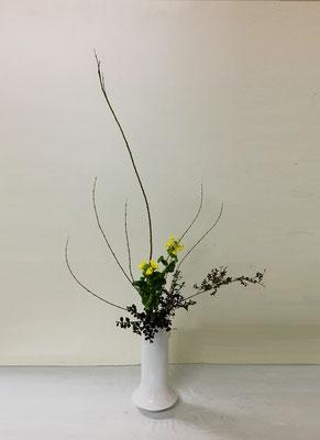 2019.1.30<コリヤナギ 菜の花 ツゲ> Akikoさんの作品です。花瓶に「たてるかたち」のお稽古2回目。