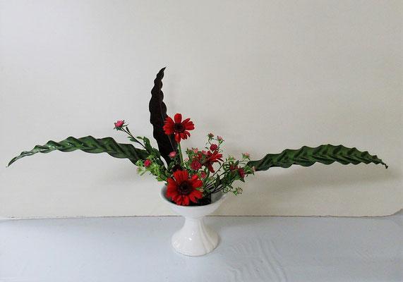 2020.8.19 <カラテア ガーベラ アスター> Ittuちゃんの作品です。アスターはエゾギクと呼ばれている花です。赤やピンク、紫など色々な色があります。