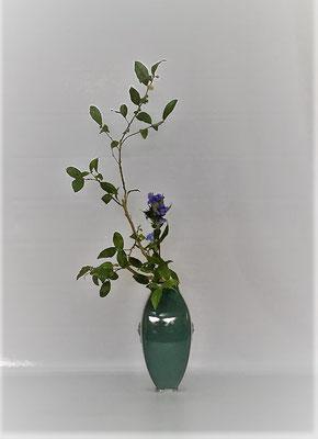 10/17 <お茶の木 竜胆> 皹寧窯礎瓶(ひびねいよういしずえへい)を使用して小品花に。 Kumikoさんの作品です。