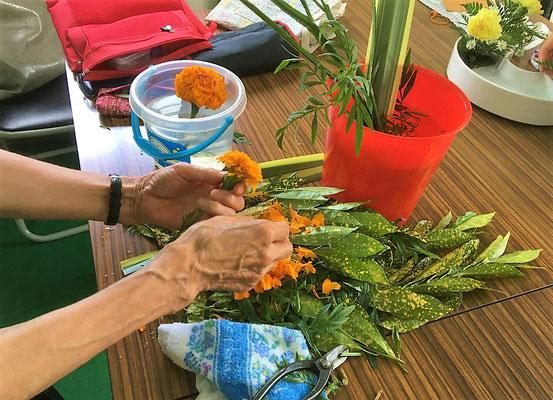 手まりのように咲き開いたマリーゴールドの花を少し小ぶりにするため花びらを整理しているところです。