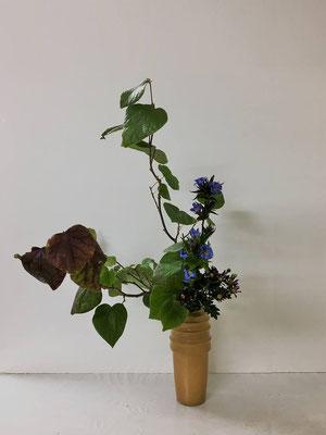 <マルバノキ 竜胆(リンドウ) 小菊> Yukiさんの作品です。マルバノキの大きな葉の扱いが難しかったですね。葉の整理を頑張りましたね。