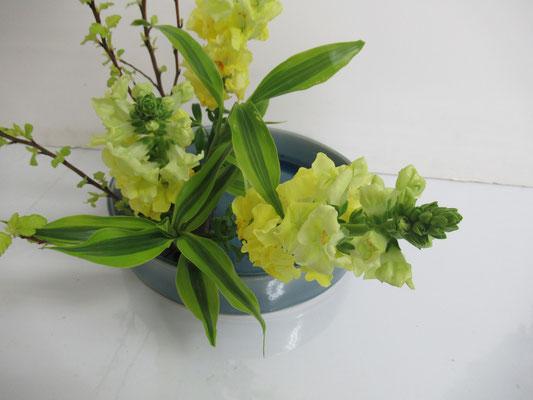 色合いが春らしくてとても綺麗です。