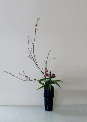2019.5.8 <オタルモミジ 菊 著莪(シャガ)> Atsukoさんの作品です。