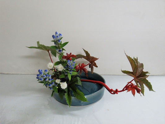 2020.10.14 <唐胡麻(トウゴマ) 竜胆(リンドウ) 孔雀草(クジャクソウ)> Katsurakoさんの作品です。観水型のお稽古をしました。