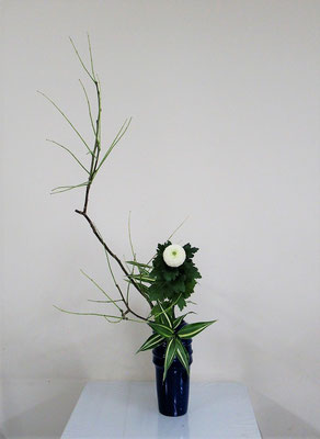 2020.7.22 <槐(エンジュ) オランダ玉菊 ドラセナサンデリアーナ> Atsukoさんの作品です。