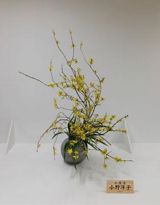 2019.4.18~20 前期に出品しました。花材は、連翹(レンギョウ)、カラー、著莪(シャガ)。