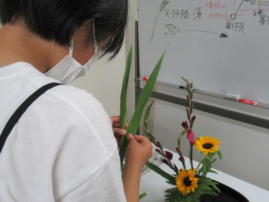 初めての盛花・直立型のお稽古をするHinanoちゃん。