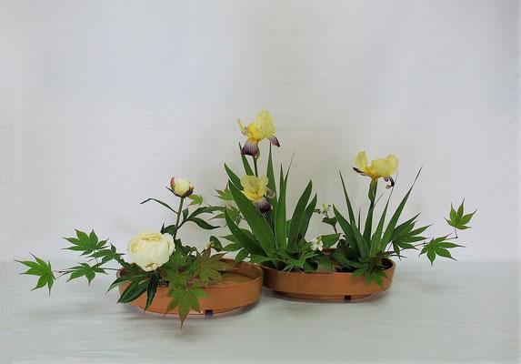 2021.6.22 <ジャーマンアイリス 芍薬(シャクヤク) ドクダミ 楓(カエデ)> Kumikoさんの作品です。お庭に咲いたジャーマンアイリスを使ってのお稽古です。