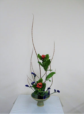 2019.12.18 <行李柳(コリヤナギ) サンタンカ スターチス> Katsurakoさんの作品です。たてるかたちのお稽古です。