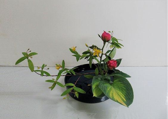 2020.6.17 <未央柳(ミオウヤナギ) 芍薬(シャクヤク) 擬宝珠(ギボウシ)> 観水型のお稽古 Rikuくんの作品です。