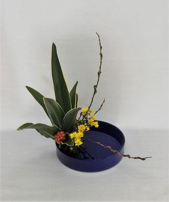 2021.1.26 <万年青(オモト) 赤芽柳(アカメヤナギ) 小菊> 色彩盛花・様式本位をお稽古しました。Chiakiさんの作品です。