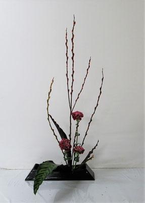 2020.12.9 <赤芽柳(アカメヤナギ) カーネーション カラティア> Michikoさんの作品です。カラティアの独特な表現にこだわっていけてみました。