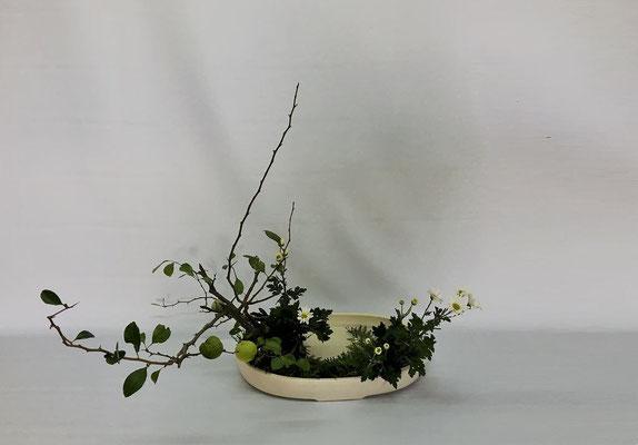 2018.10.2 <実木瓜 小菊 下草(ヒバを代用)> Tamikoさんの作品です。写景盛花・様式本位のお稽古です。