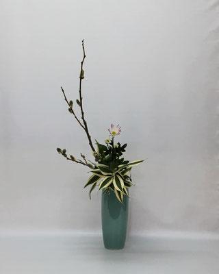 <猫柳 菊(スプレーマムの種類?) ドラセナ・サンデリアーナ> Kumikoさんの作品です。
