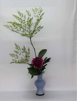 2018.7.3 <南天(ナンテン) 芍薬 擬宝珠> Tamikoさんの作品です。惚れ惚れするような素敵な芍薬を蓮葉口礎花瓶にいけてみました。