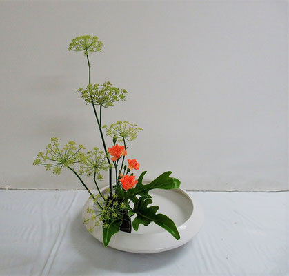 2020.7.15 <茴香(ウイキョウ) カーネーション クッカバラ> 盛花・直立型 Katsurakoさんの作品です。