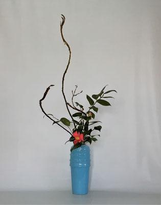 2019.3.5 <石化柳 椿> Tamikoさんの作品です。取り合わせに小菊も入っていたのですが、椿の花を強調するためスッキリとしてみました。