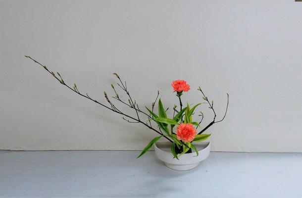 2019.5.22 <オタルモミジ カーネーション ドラセナ・サンデリアーナ> 初めての「かたむけるかたち」 Qianさんの作品です。