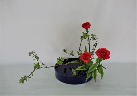 2019.5.14 <花海棠 カーネーション ドラセナ・サンデリアーナ> Chiakiさんの作品です。観水型のお稽古3回目。