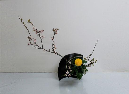 2020.4.15 <紅李(ベニスモモ) オランダ玉菊> Katsurakoさんの作品です。余った花材で二作目をいけました。