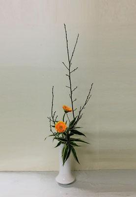 <梅 ガーベラ ドラセナ・サンデリアーナ> Akikoさんの作品です。「たてるかたち」を瓶にいけるのは初めてです。集中してよく頑張りました。