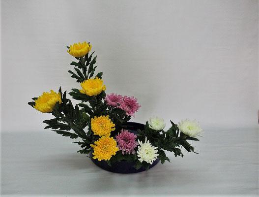 2020.10.27 <菊の三種挿し> Chiakiさんの作品です。初めて菊の色彩盛花・様式本位のお稽古をしました。