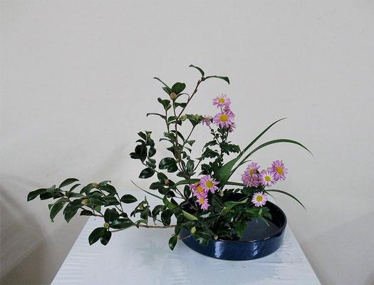 2020.11.11 <山茶花(サザンカ) 小菊 シャガ> Ittsuちゃんの作品です。