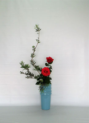 2019.7.2 <金宝樹 薔薇(バラ)小菊> Tamikoさんの作品です。金宝樹の硬い葉をかなり整理しました。