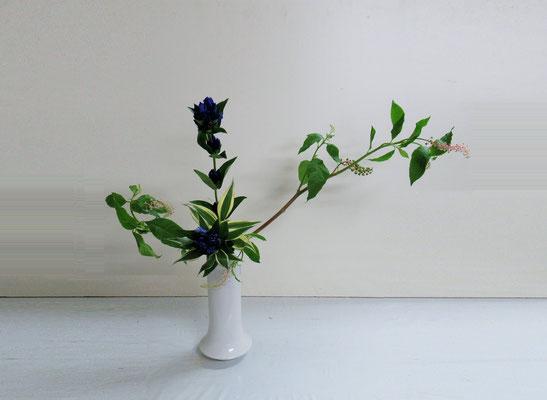 2019.8.21 <山ごぼう 竜胆(リンドウ) ドラセナサンデリアーナ> Qianさんの作品です。こちらも初めての瓶花。「かたむけるかたち」を瓶にいけました。