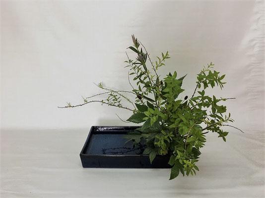 2020.9.1 <雪柳 木苺 竜胆(リンドウ)> Chiakiさんの作品です。写景盛花のお稽古をしました。夏の名残を感じる作品です。