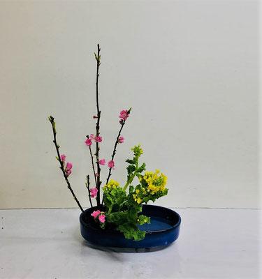 <桃 菜の花> Hinakoさんの作品です。