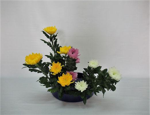 2020.10.27 <菊の三種挿し> Kumikoさんの作品です。年に一度はお稽古したい様式です。