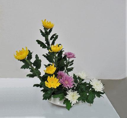 2020.10.28 <菊の三種挿し> 色彩盛花・様式本位のお稽古をしました。Atsukoさんの作品です。