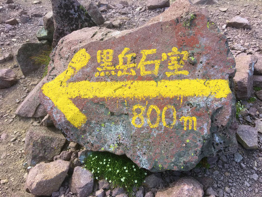 山頂で一休みしたら、黒岳石室へ。