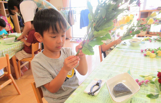お花を束ねている輪ゴムを外しています。上手にできるかな?