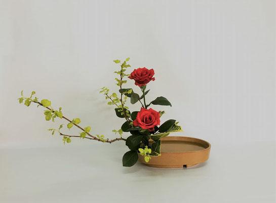 <金葉こでまり 薔薇 クロトン> Chiakiさんの作品です。盛花。初めての傾斜型です。