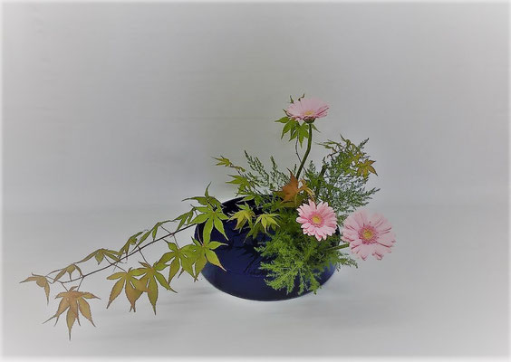 <モミジ ガーベラ アスパラガス・スプレンゲリ> Tamikoさんの作品です。