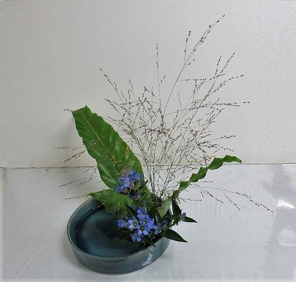 2020.10.7 <谷渡り(タニワタリ) リンドウ パニカム> Ittsuちゃんの作品です。伸びやかに花材の特長を捉えていけられたと思います。