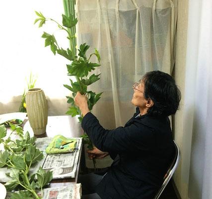 木苺の枝ぶりを確認するYoshiさん。