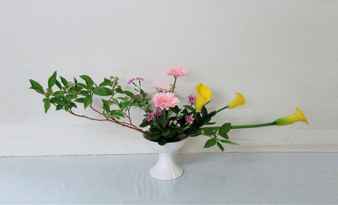 2019.6.12 <珊瑚水木 カラー ガーベラ 撫子 丸葉ルスカス> Akikoさんの作品です。