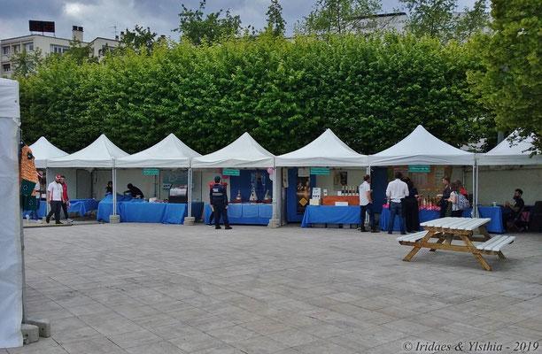 Puteaux - 5.2019 :   Une autre vue du salon.  /  Another view of the fair.