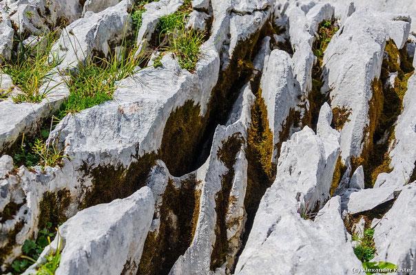 Scharfe Felsen auf dem Weg zum Gipfel
