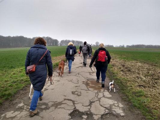 Social Walk, Tante Amanda, Februar